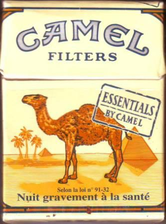 Camel Essentials