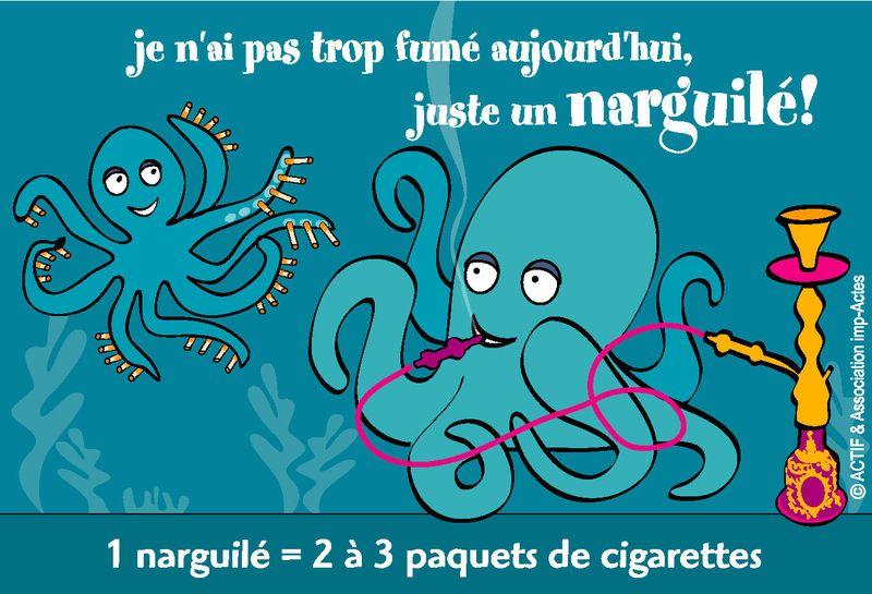 Narguile chicha hookah cigarettes Dautzenberg OFT