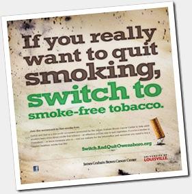tabac sans fumee snus rodu