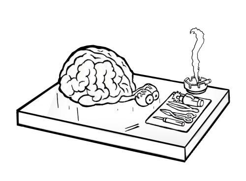 Antismoker brains